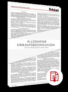 Allgemeine Einkaufsbedingungen_HAVLAT_Praezisionstechnik_GmbH